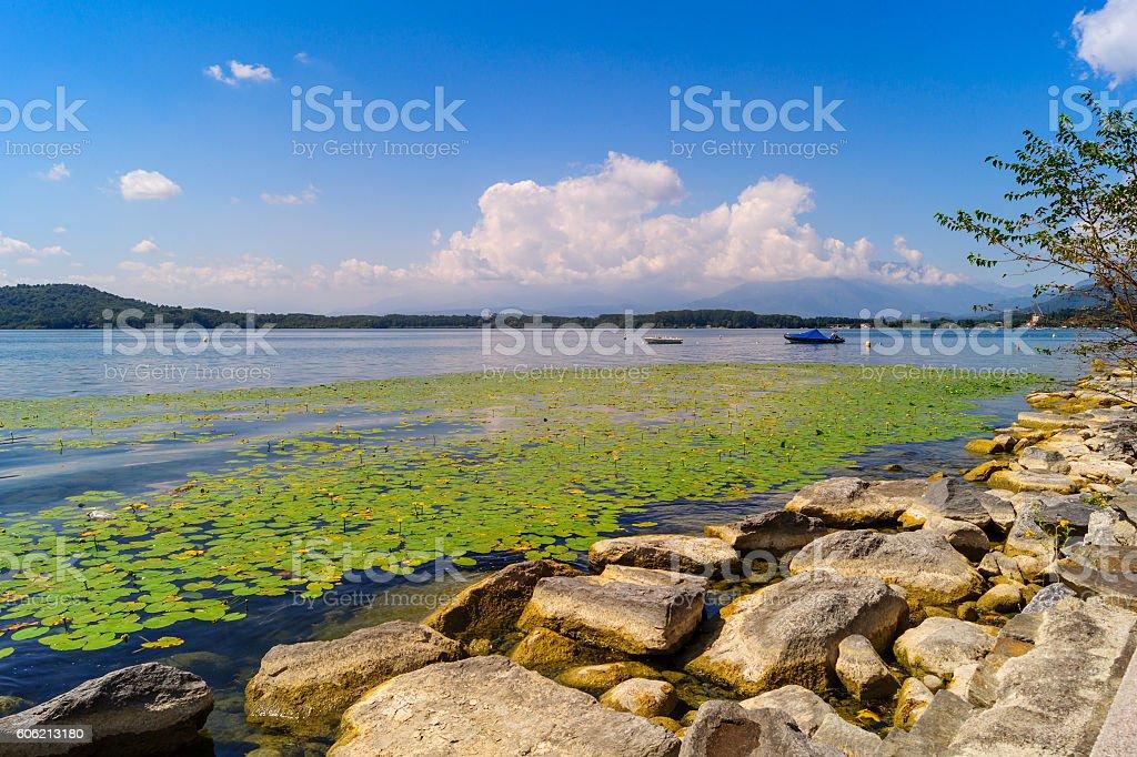 Lake of Viverone panorama with mountains on horizon. stock photo