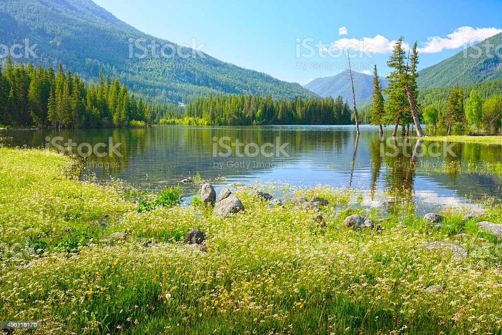 lake on a morning in spring stock photo