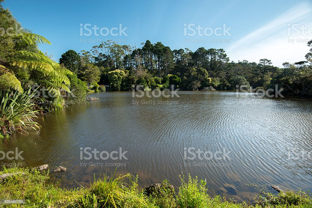 Lake on a sunny day stock photo