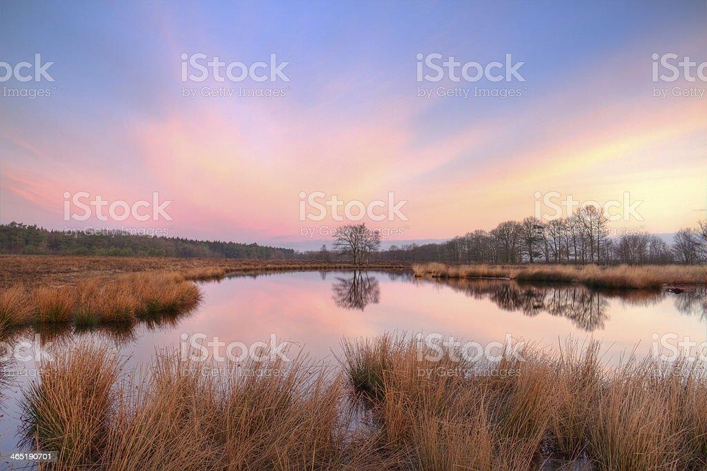 Lake on moor stock photo