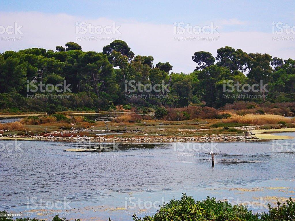lake on Saint Margarita's island stock photo