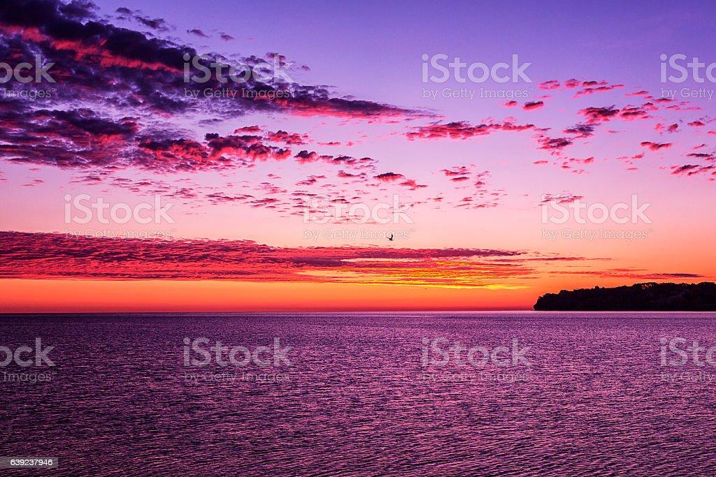 Lake Ontario Sunrise Sea Gull Just Before Dawn stock photo