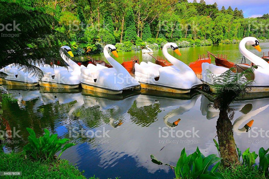 Lake paddleboats - Gramado, Rio Grande do Sul - Southern Brazil stock photo