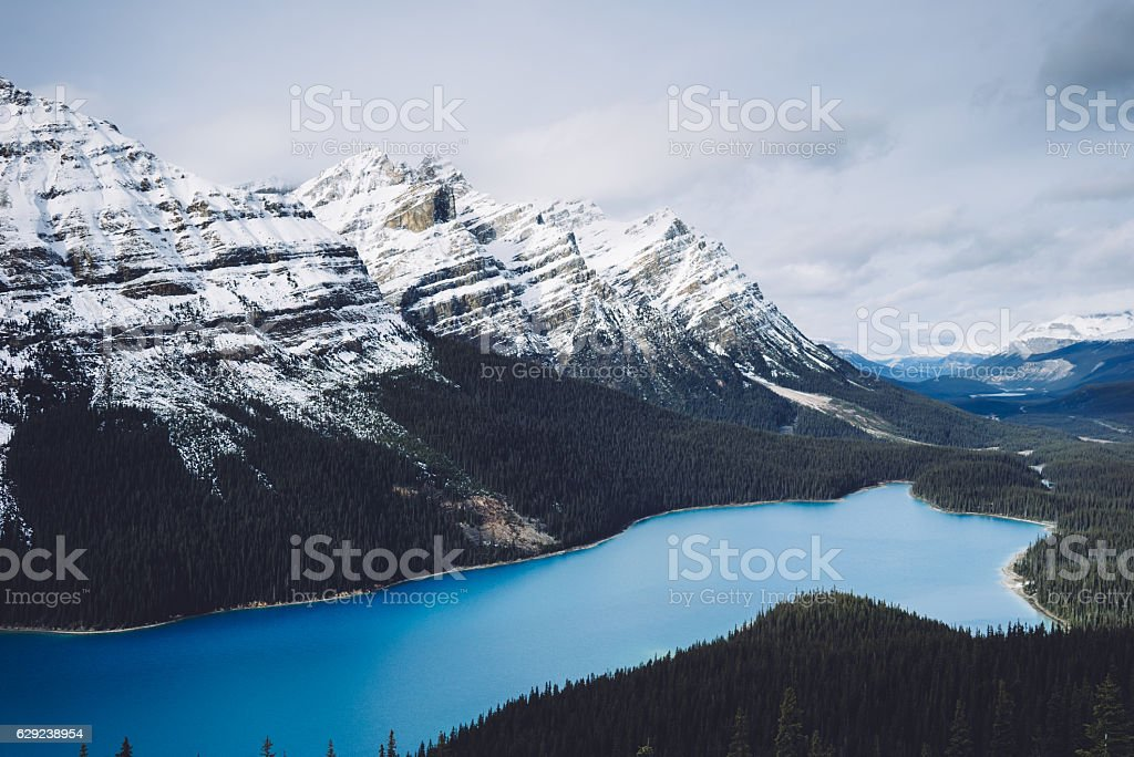 Lake Peyto Canadian Rocky Mountains stock photo