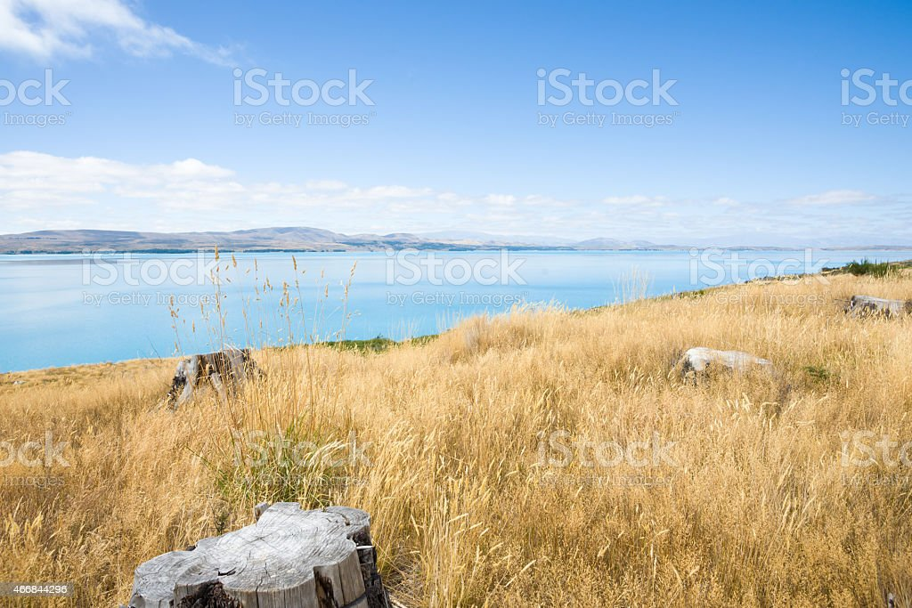 Lake Pukaki, stunning South Island lake scene,NZ stock photo