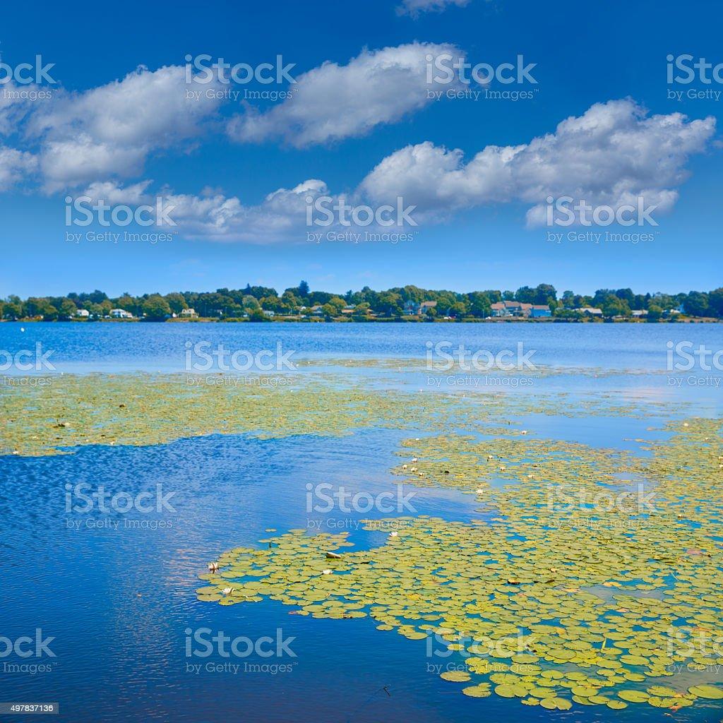 Lake Quannapowitt in Wakefield near Boston stock photo