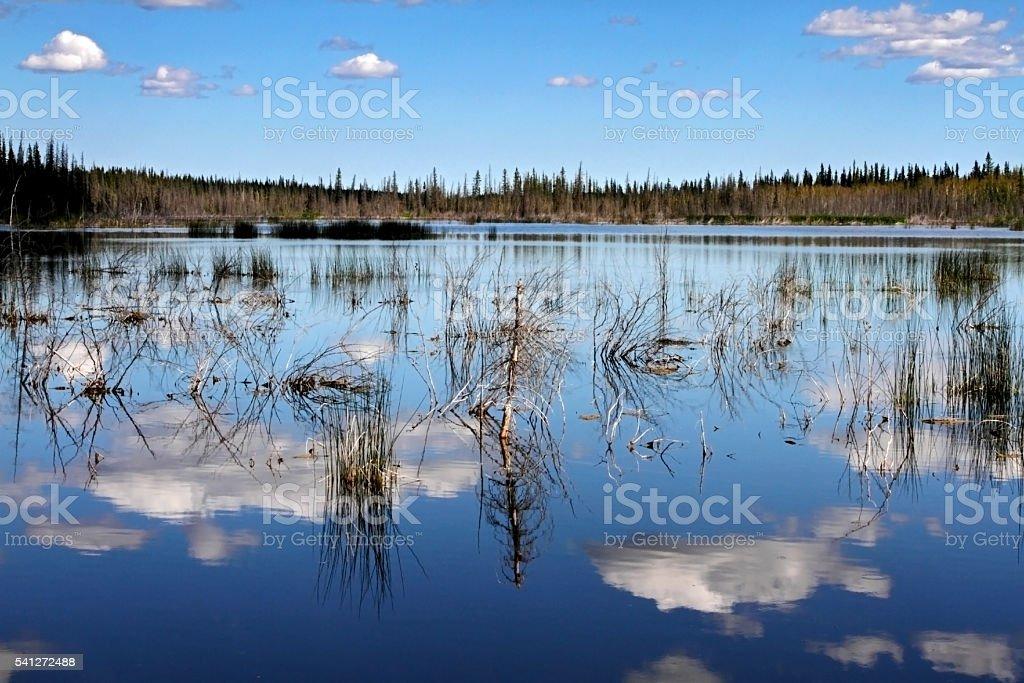 Lake Reflections stock photo