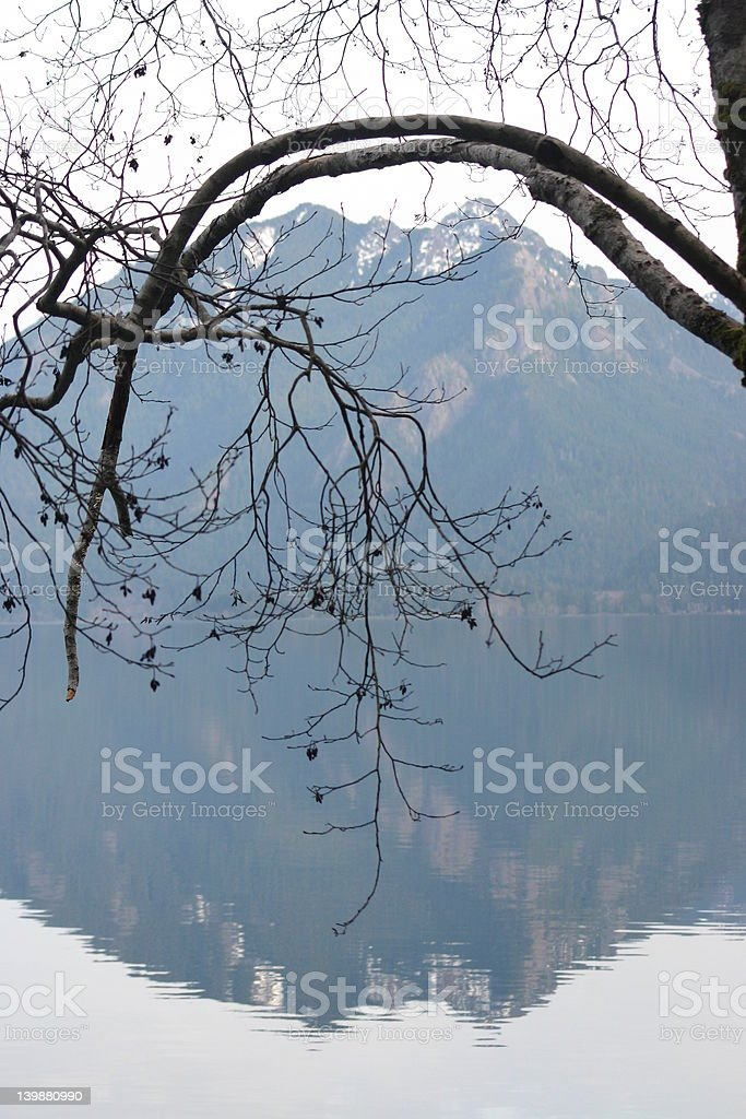 lake relection royalty-free stock photo