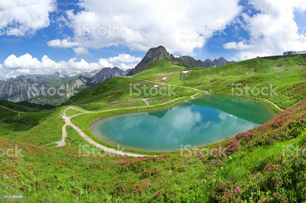Lake Riezler Alpsee with alpine roses stock photo