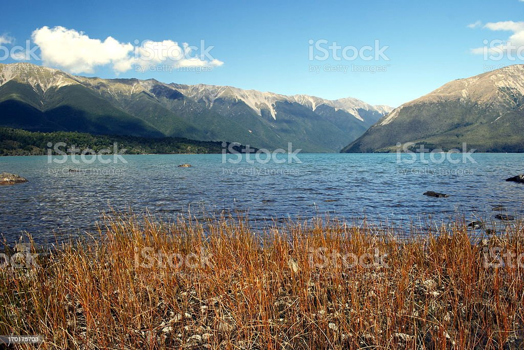 Lake Rotoiti, Nelson Lakes National Park, NZ royalty-free stock photo