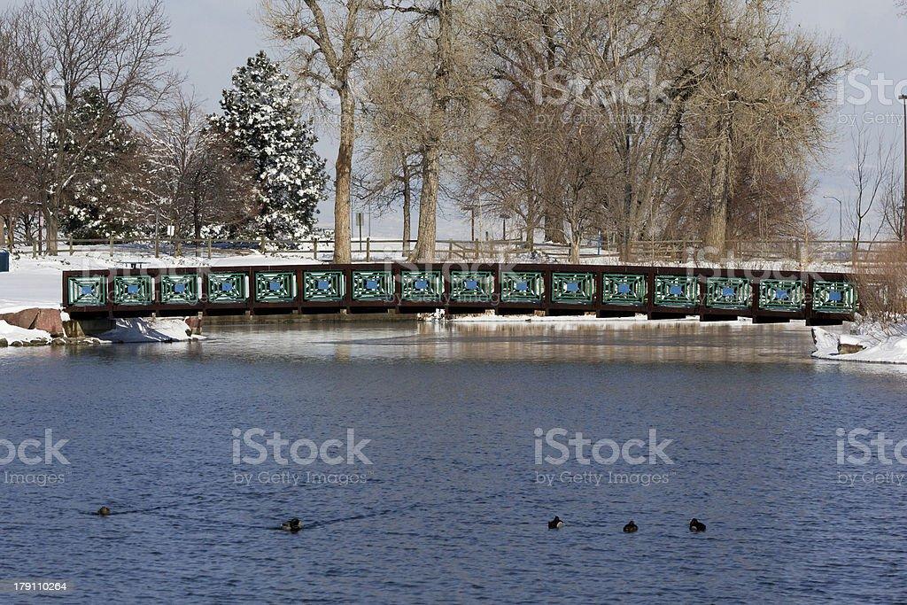 Lake Scene in Winter royalty-free stock photo