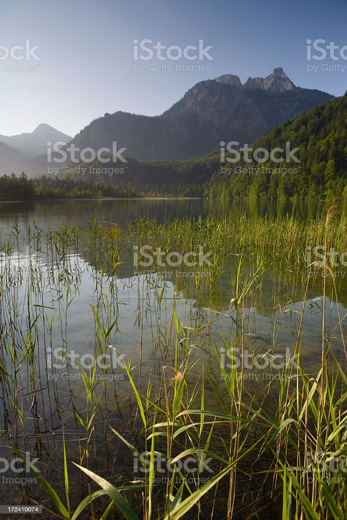 lake schwanensee royalty-free stock photo