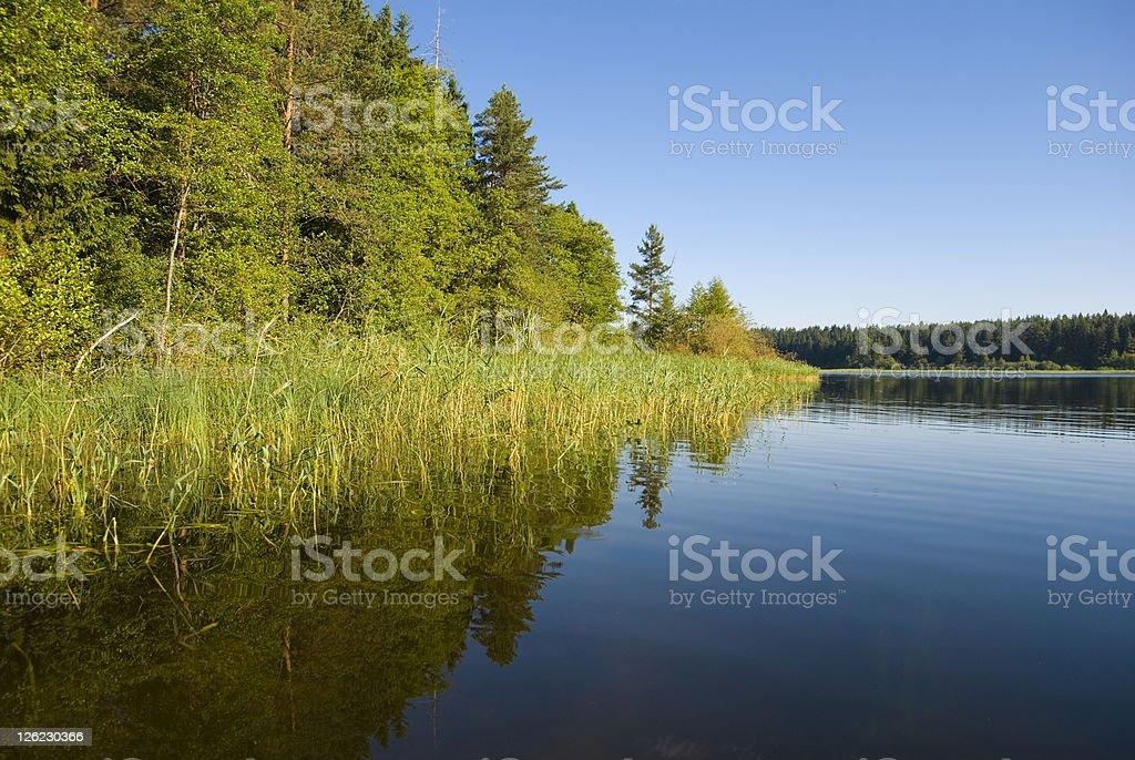Lake Seliger coast stock photo
