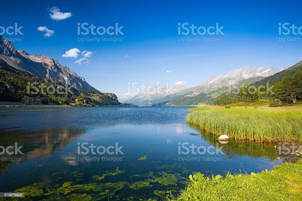 Lake Sils - lake in Switzerland. stock photo