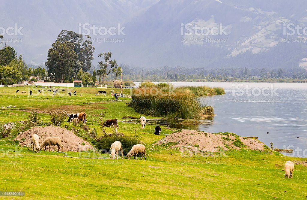 Lake St. Paul, Imbabura Ecuador stock photo