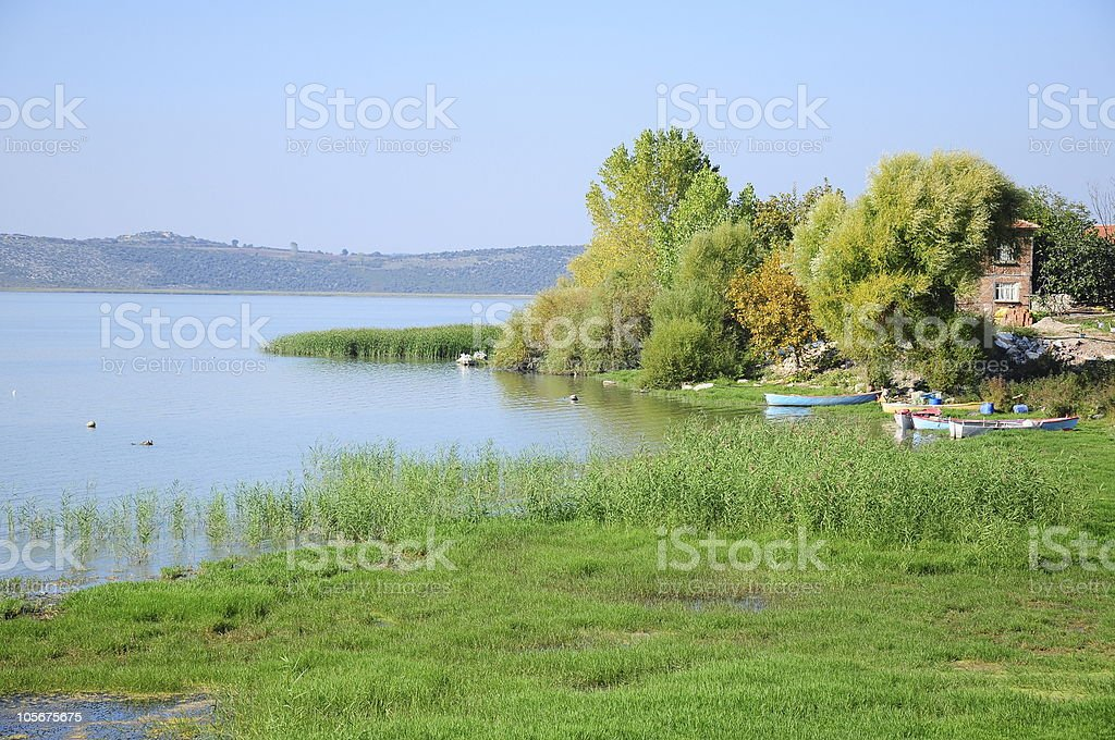 lake surrounded with green plant royalty-free stock photo