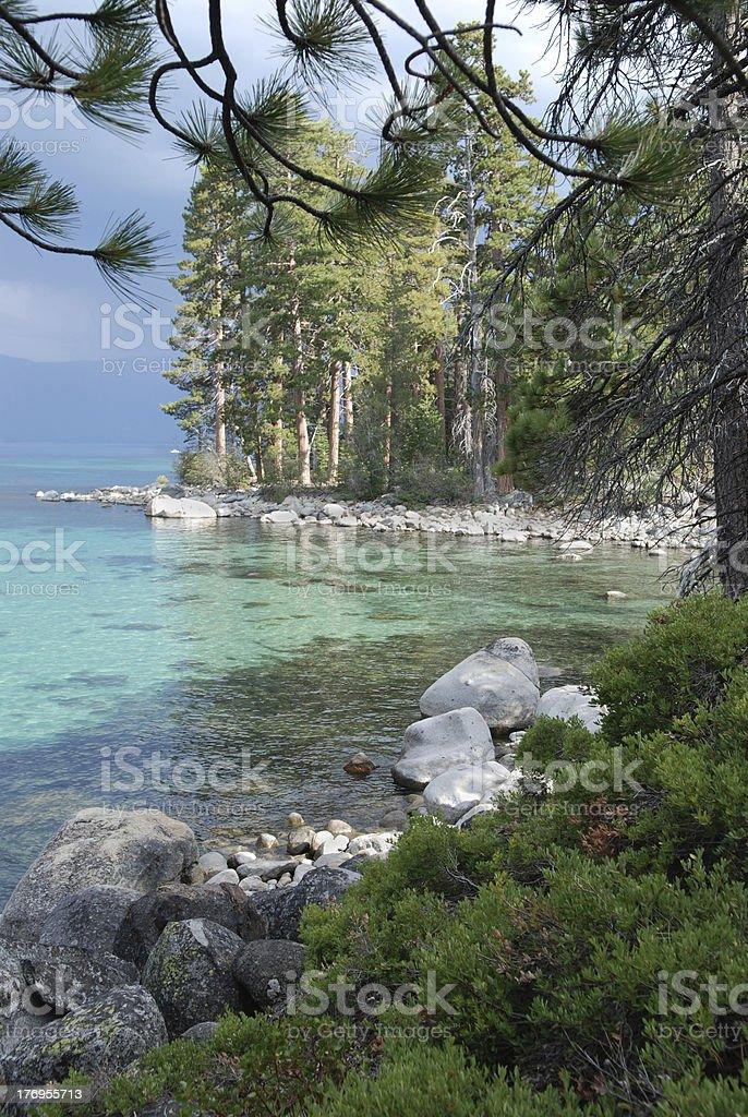 Lake Tahoe Shore royalty-free stock photo
