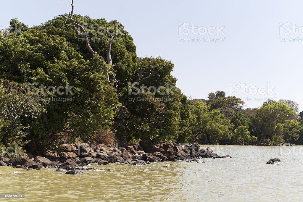 Lake Tana Ethiopia stock photo