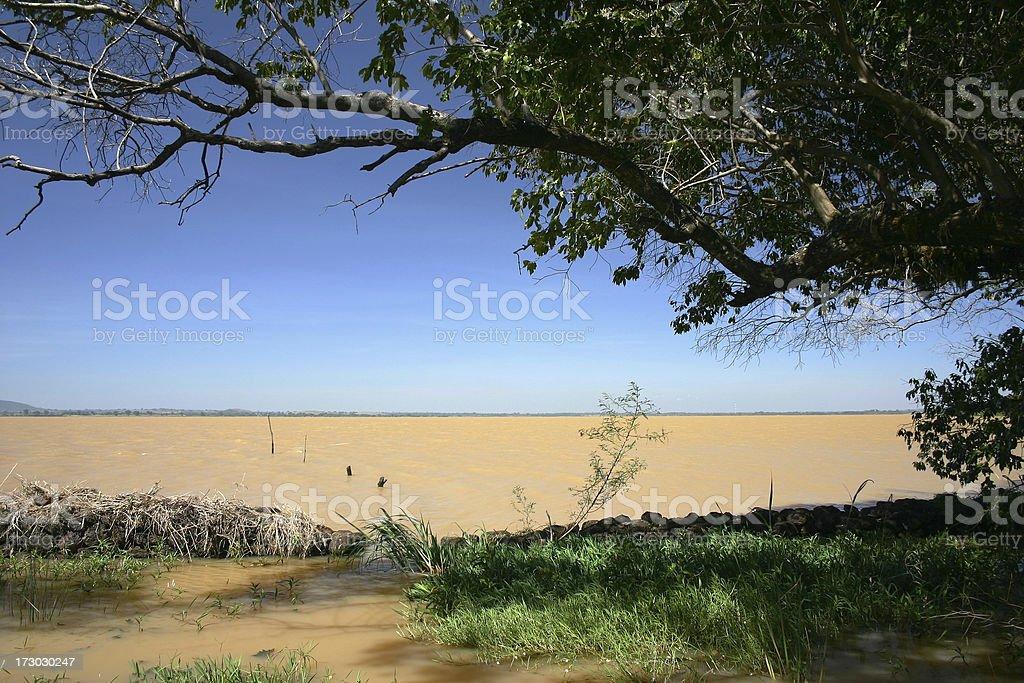 Lake Tana stock photo