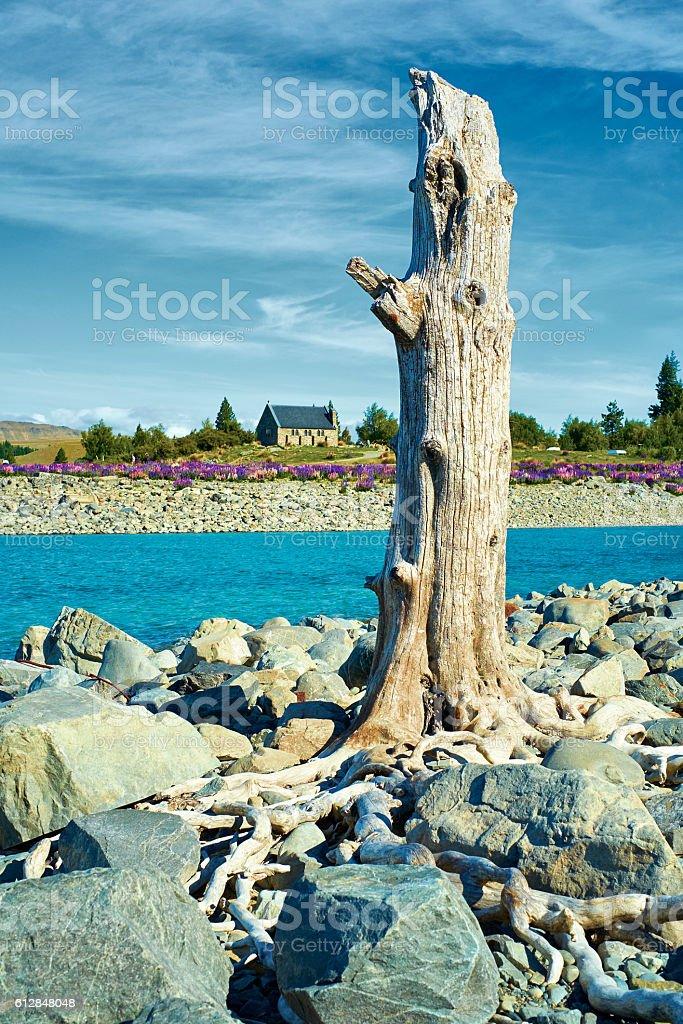 Lake Tekapo And Church Of The Good Shepherd stock photo