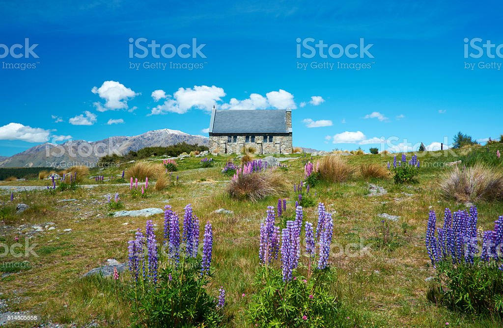 Lake Tekapo Church And Lupins stock photo