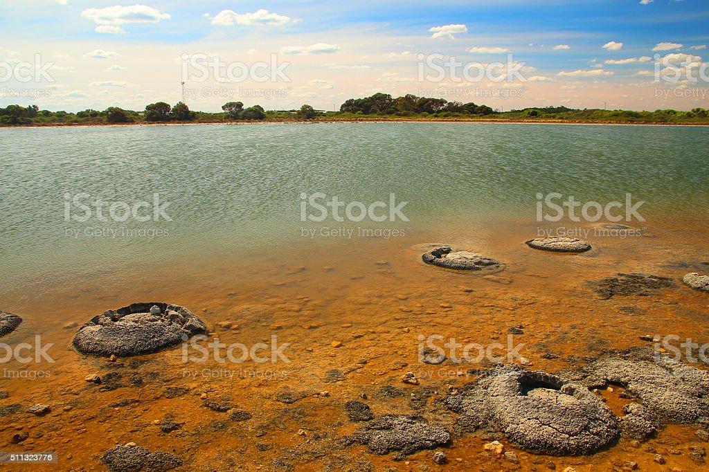 Lake Thetis and Stromatolites stock photo