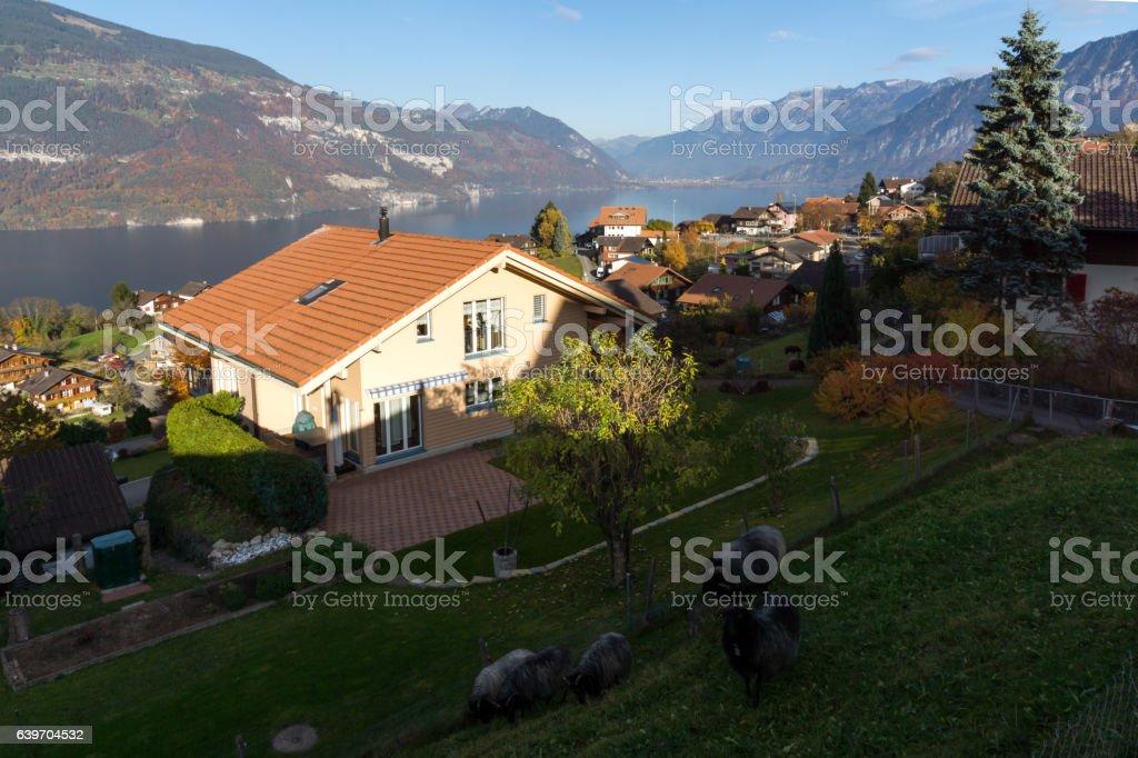 Lake Thun and typical Switzerland village near town of Interlaken stock photo