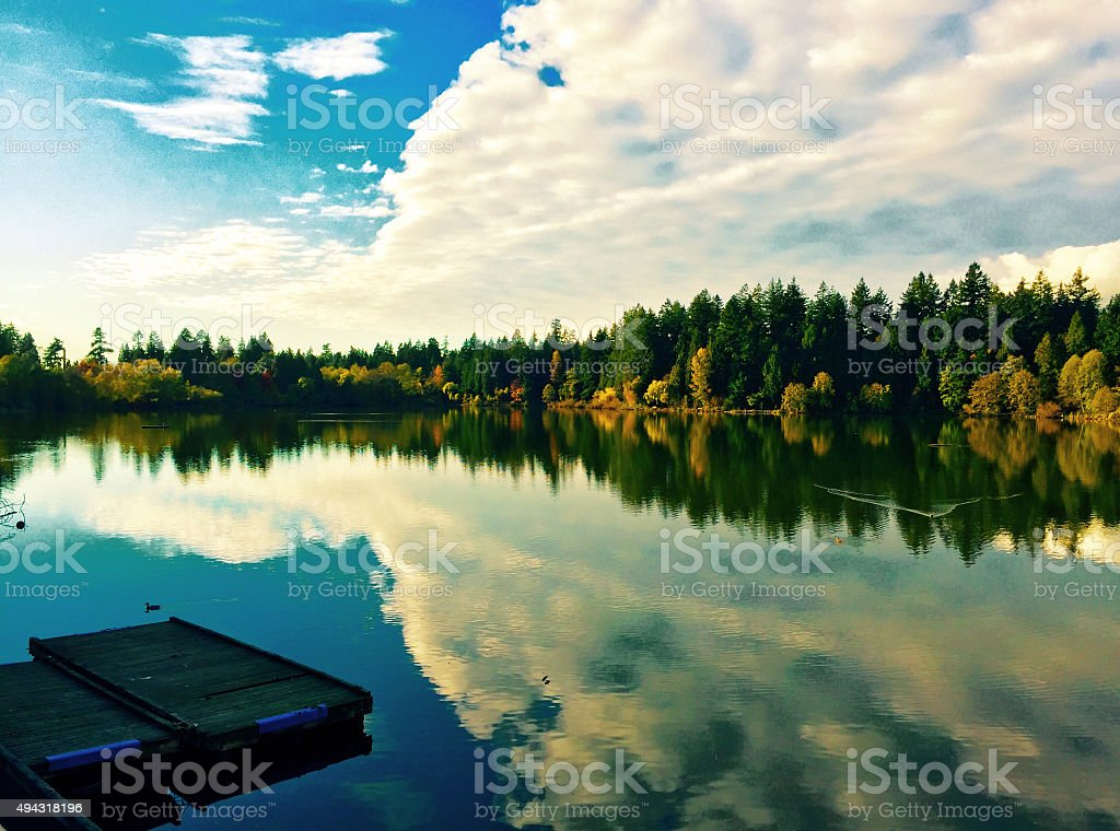 Lake view with clouds and trees royalty-free stock photo