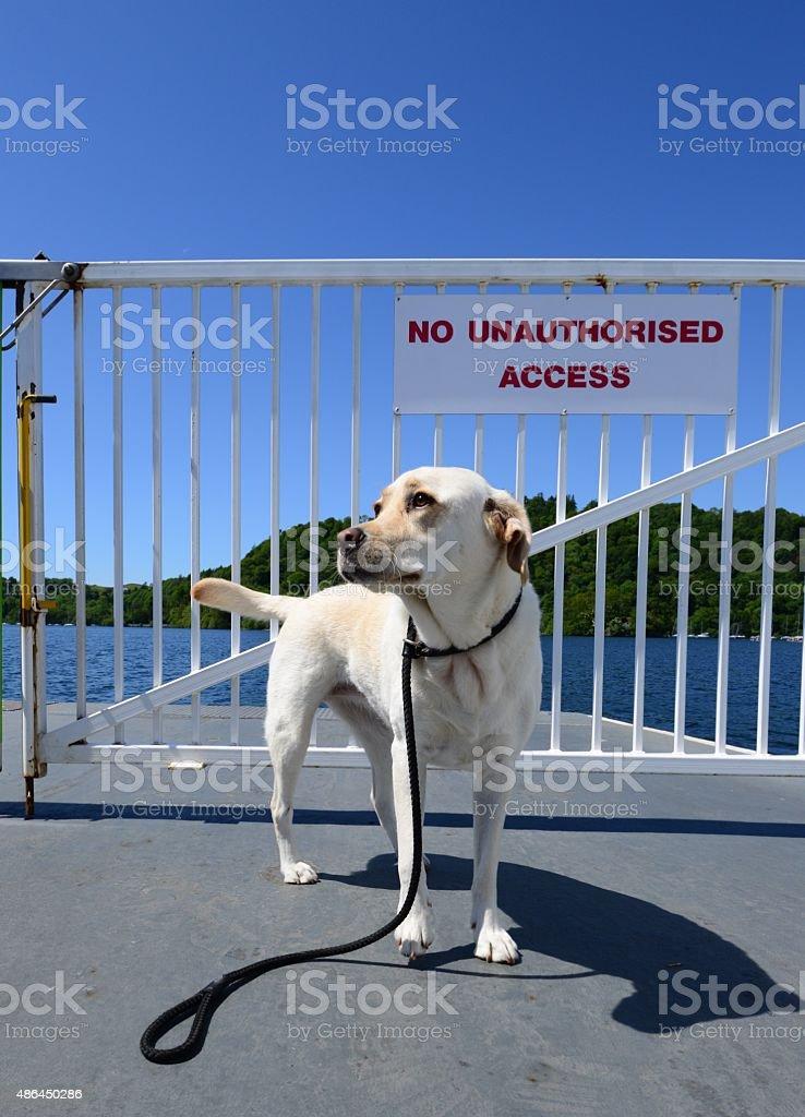 Lake Windermere Ferry stock photo