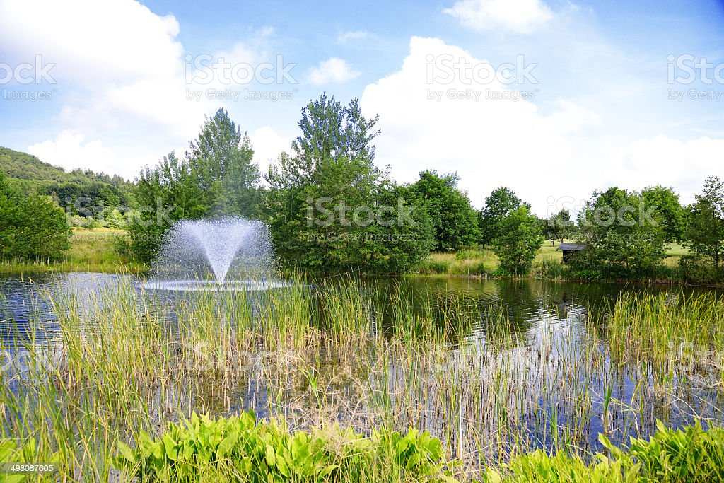 Lake with fountain in front of trees royalty-free stock photo