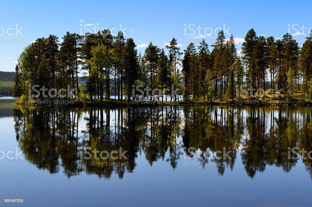 Lake with reflection of trees. stock photo
