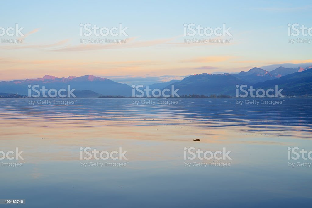 Lake Zurich and swiss mountains during blue hour stock photo