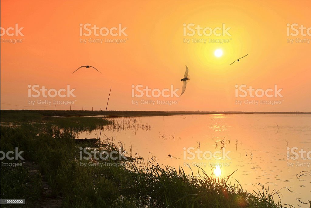 Lakefront stock photo
