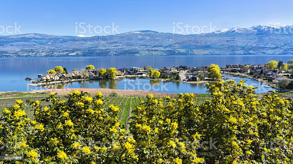 Lakefront Subdivision on Okanagan Lake West Kelowna British Columbia Canada stock photo