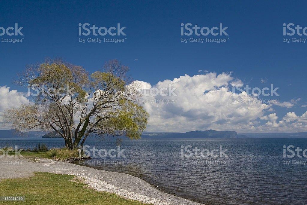 Lakefront view stock photo