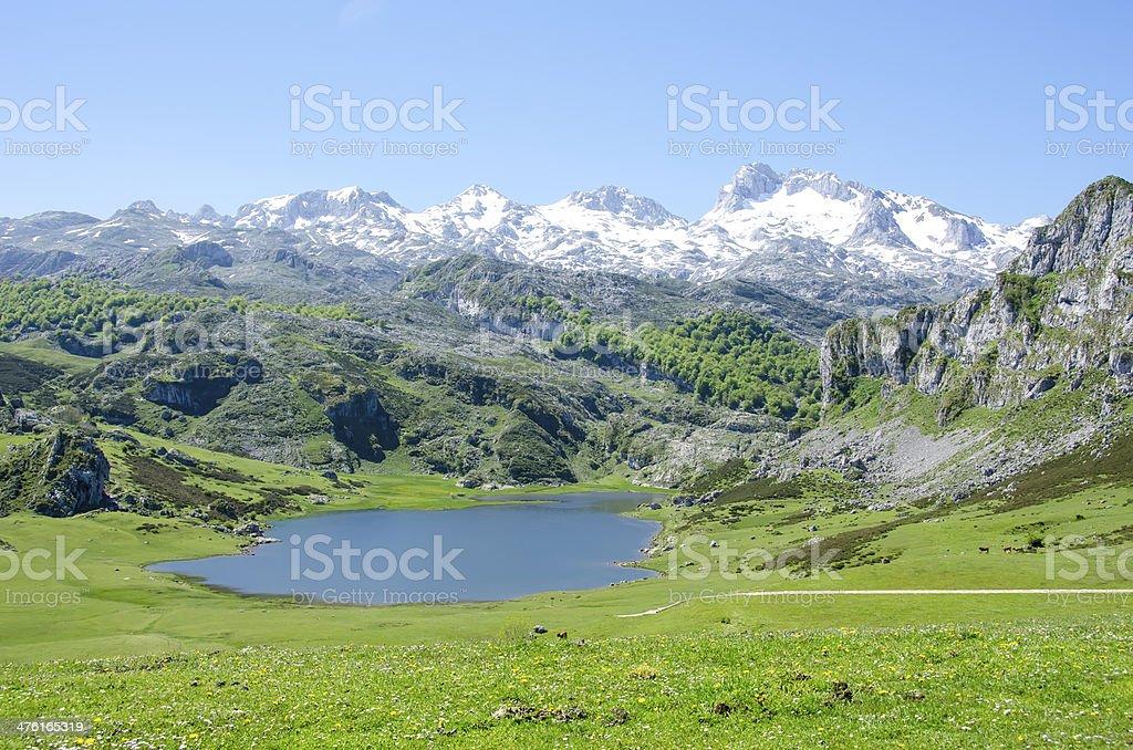 Lakes of Covadonga stock photo