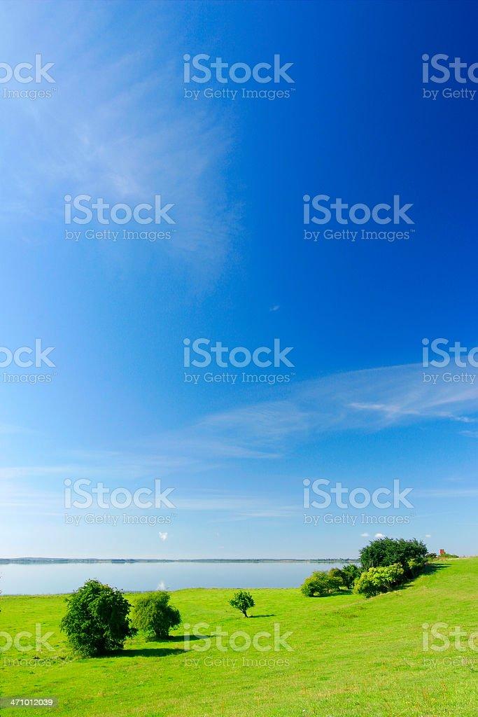 Lakeshore Pasture royalty-free stock photo