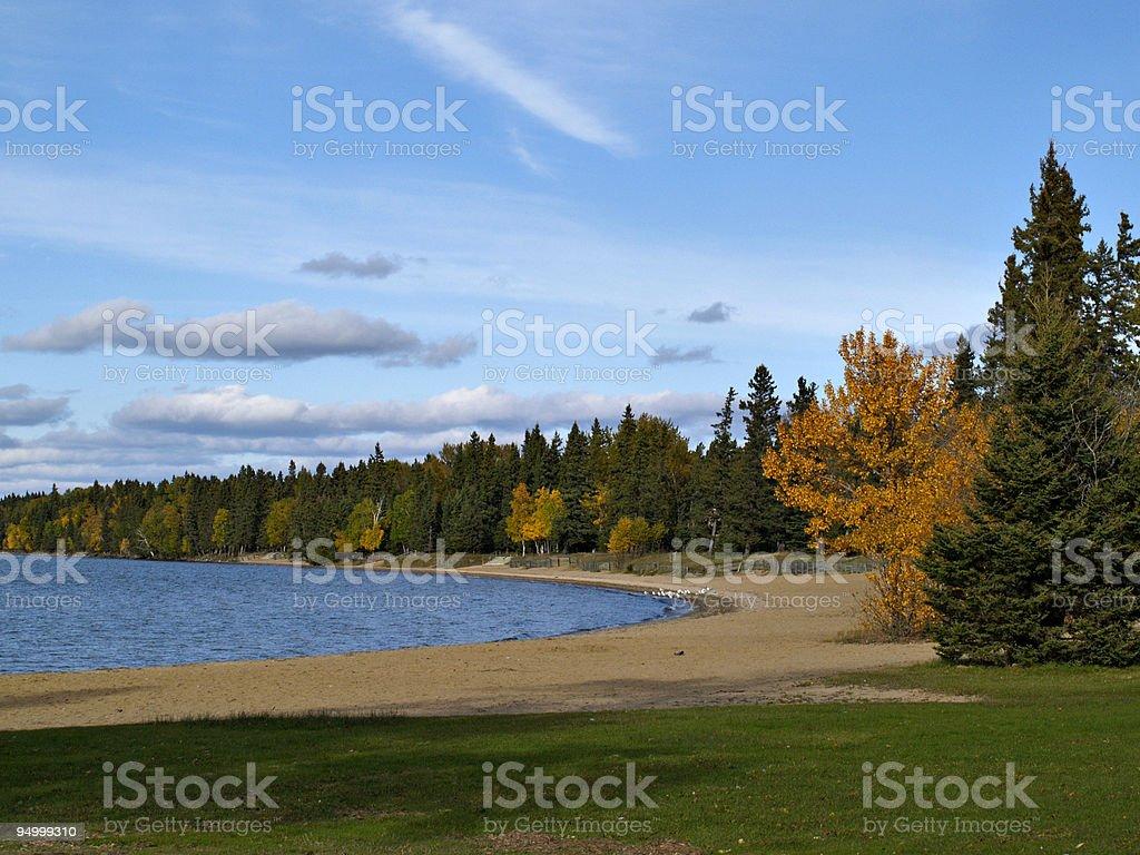 Lakeside Autumn Forest stock photo