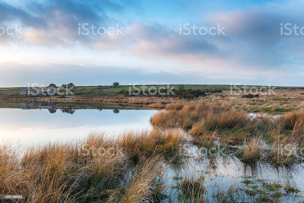 Lakeside Cottages stock photo