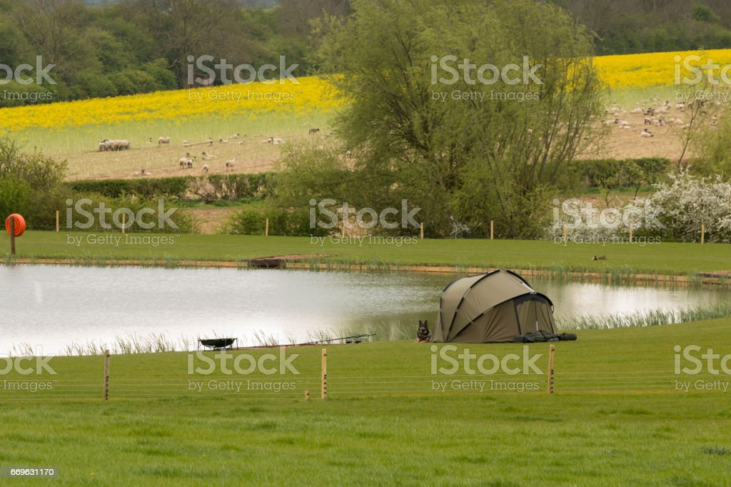 Lakeside Fishing With A Dog stock photo