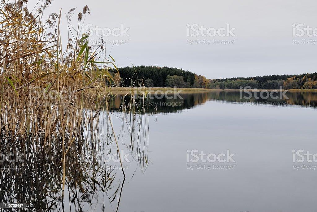 Lakeside royalty-free stock photo