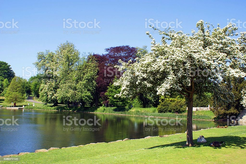 Lakeside scene in Kent, England stock photo