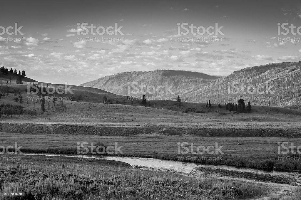 Lamar Valley Black and White stock photo