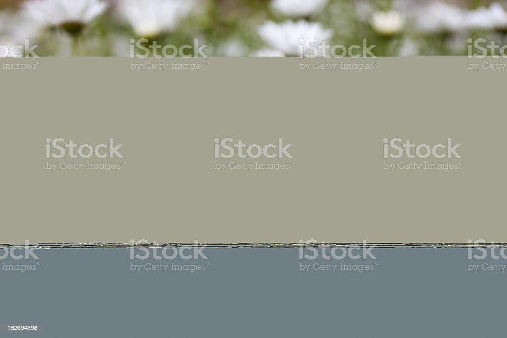 Lamb Marinade stock photo