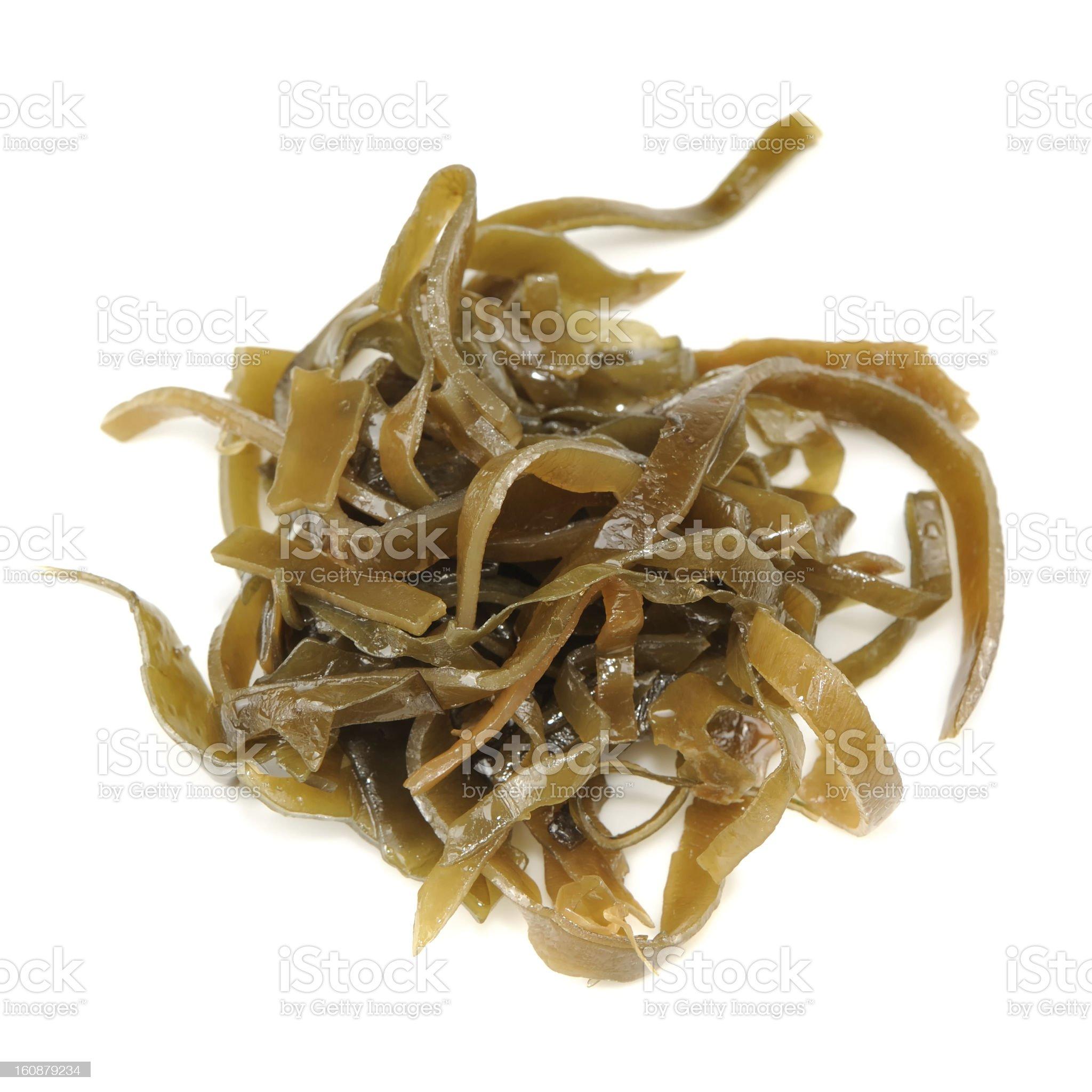 Laminaria (Kelp) Seaweed Isolated on White Background royalty-free stock photo