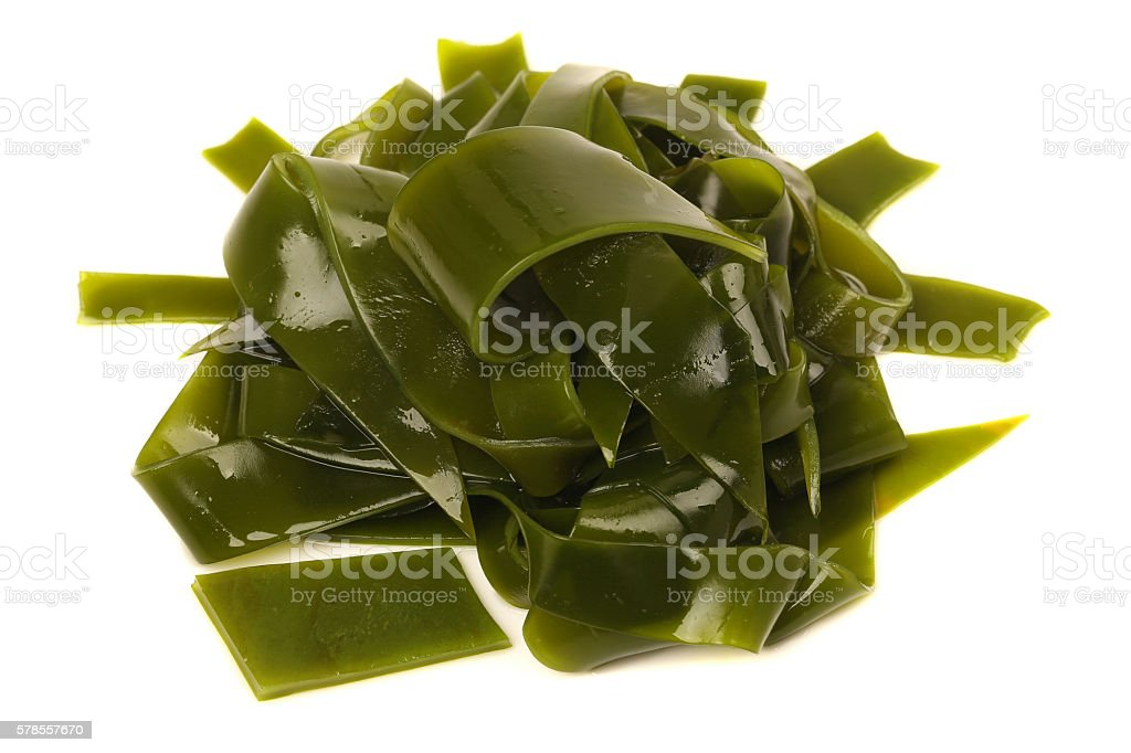 Laminaria (Kelp) Seaweed Isolated stock photo
