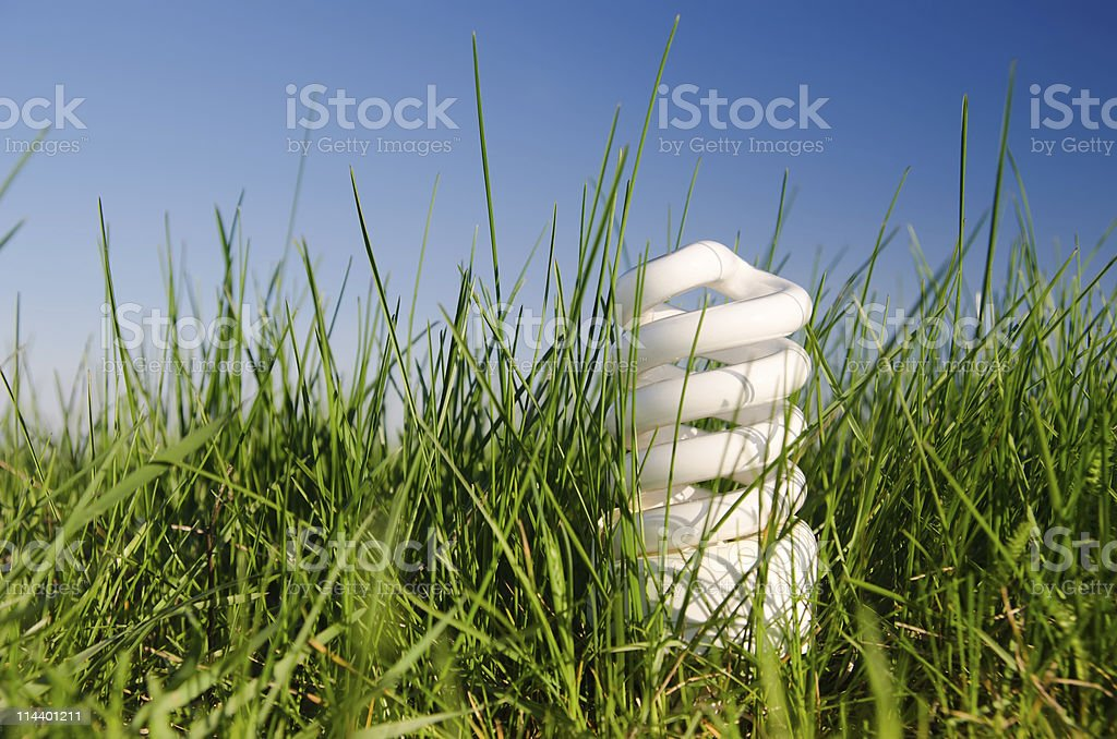 lamp in green grass royalty-free stock photo
