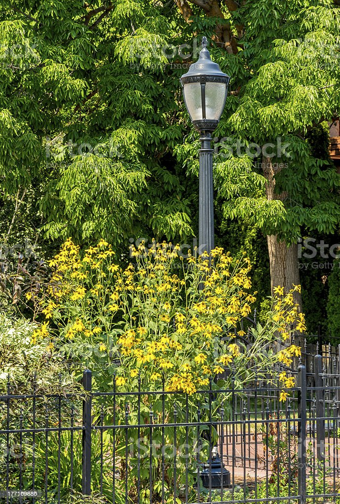 Lamp post with fence and yellow flowers stock photo