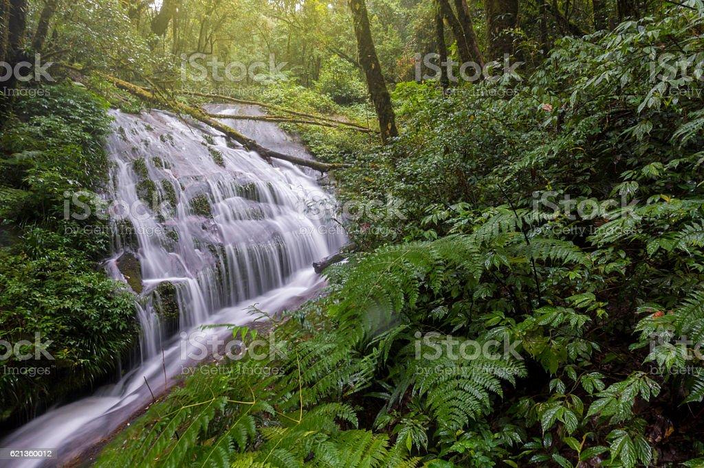 Lan Sadej Waterfal at Doi Inthanon National Park. stock photo