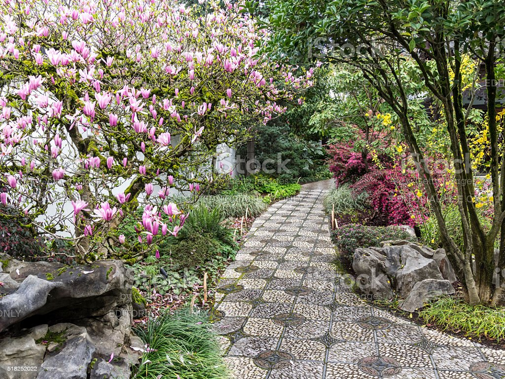 Lan Su Chinese Garden Stone Path Spring Flowers Portland Oregon stock photo